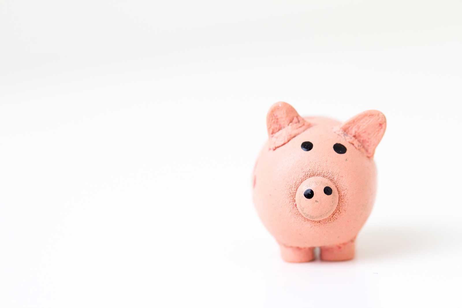 Divulgar a empresa - Imagem de um porquinho em um fundo branco.